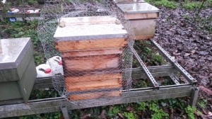 Ealing hive